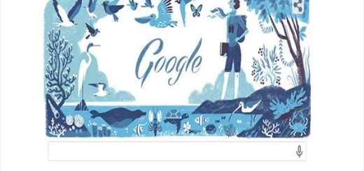 reitsel-louiz-google