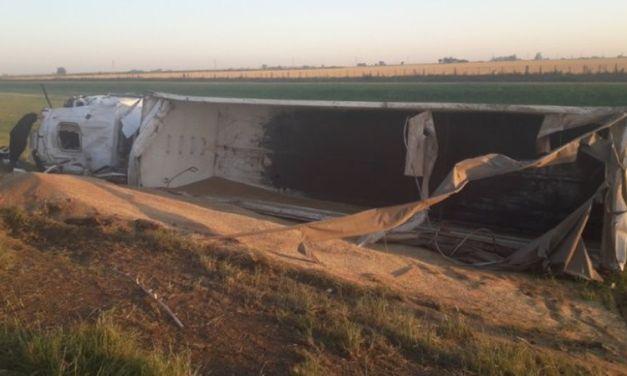 Camión de Las Parejas cargado de trigo despistó y volcó en autopista