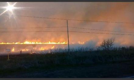 Se incendió un sector de maíz sin cosechar
