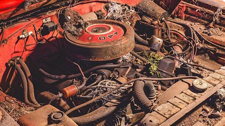 Foto Dodge Daytona