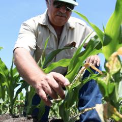 Farming Underwater: Steve Mello's Story
