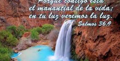 salmo36