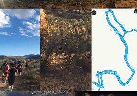 Cottontail + friendly mountain lion + loop da loop + friends = trail run in Las Vegas #wegotlost #itwasanadventure #allrunnersaccountedfor #nuunlife #trailrunning #neverboring #outsideisfree #optoutside [instagram]