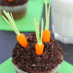 Chocolate Pudding Filled Carrot Garden Cupcakes