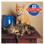 Enter to Win a Hill's Science Diet Gift Basket (5,000 Winners!)