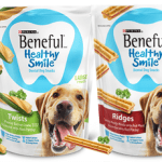 Target: Beneful Healthy Smile Dog Treats Only $1.99