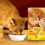 FREE Purina Friskies 7 Cat Food Sample!