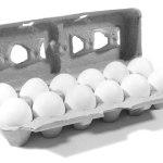 Winn-Dixie: FREE Dozen Eggs Coupon!
