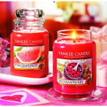 Yankee Candle: 30% off your Entire Purchase Coupon