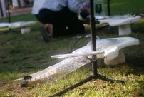 Huey Walker live beim Aquanostra Wasserfestival in Bad Doberan. (Photo: Stefanie Riech)