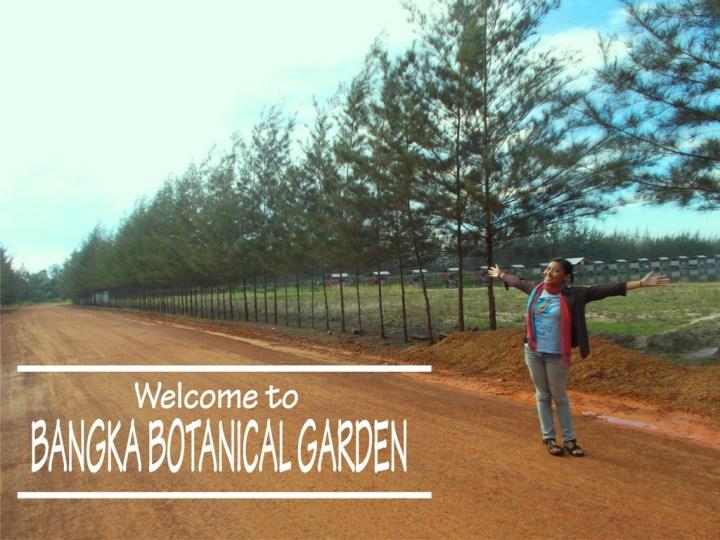 bangka-botanical-garden