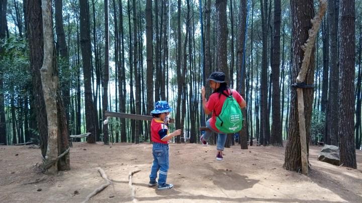hutan-pinus-jogja