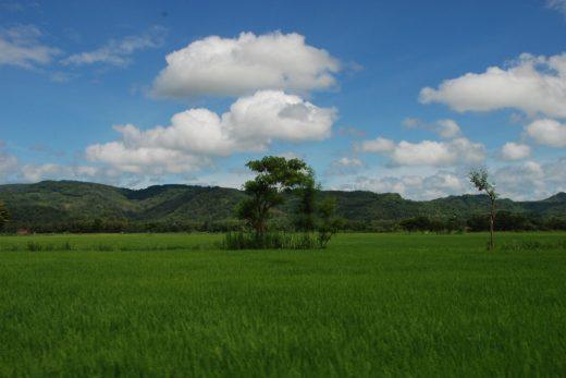 Bentang alam Selopamioro