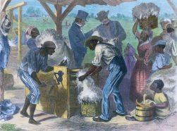US Slave Census Schedules