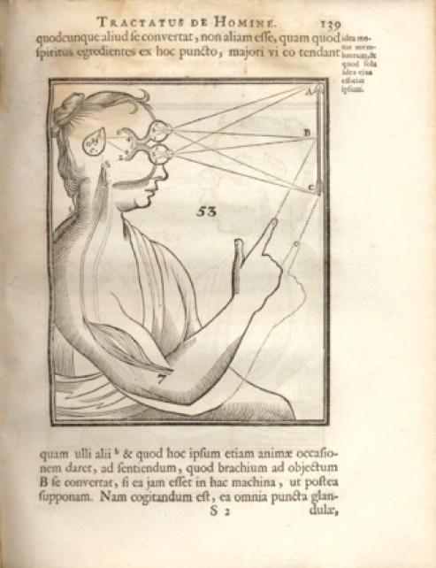 """Descartes """"tractatus de homine"""""""