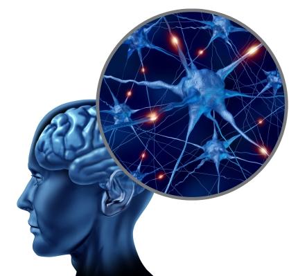 programovanie mysle