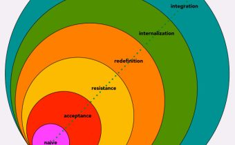 Mapping Social Identity and Power in Integral Theory