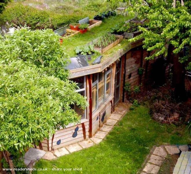 Allotment Roof Shed - Joel Bird - London