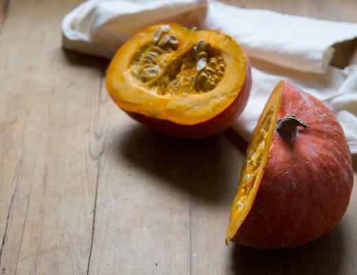 pumpkin_seeds_reading_my_tea_leaves_img_4472