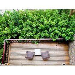 Small Crop Of Balcony Garden Privacy