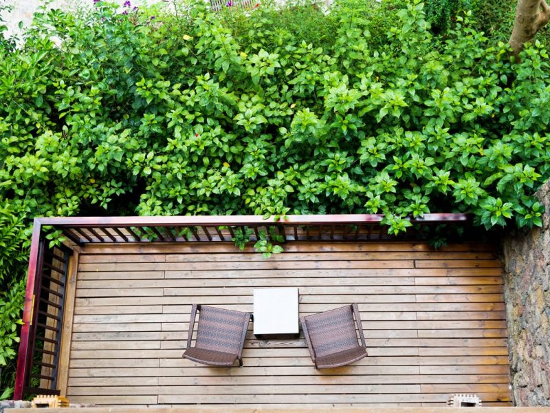 Large Of Balcony Garden Privacy