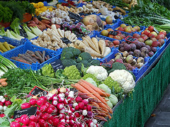 plant-based diet reduces risk of breast cancer