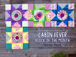 Cabin Fever Block of the Month Quilt #4