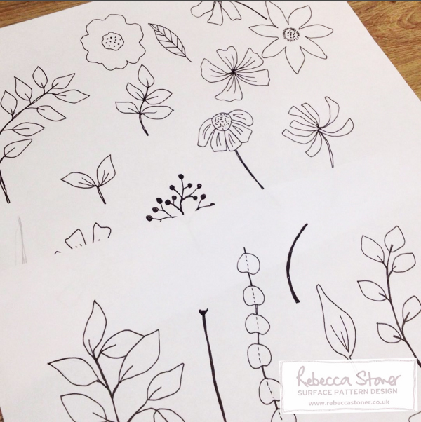 Fineliner Botanical drawings by Rebecca Stoner