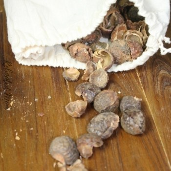 Natural Laundry Care using Soap Nuts