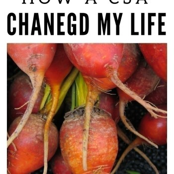 How a CSA Changed My Life