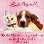 Recado Facebook Linda noite, amo você!