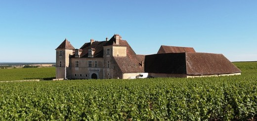 Chateau Clos de Vougeot - Borgoña