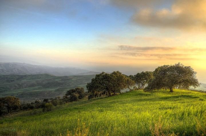 Paisaje de monte en el Sur de Andalucía