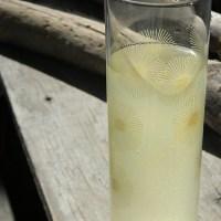 Meyer Lemon Honey Lemonade