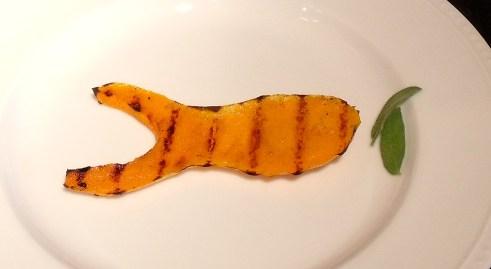 squashgoldfish