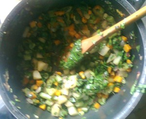 Saute Vegetable Stew