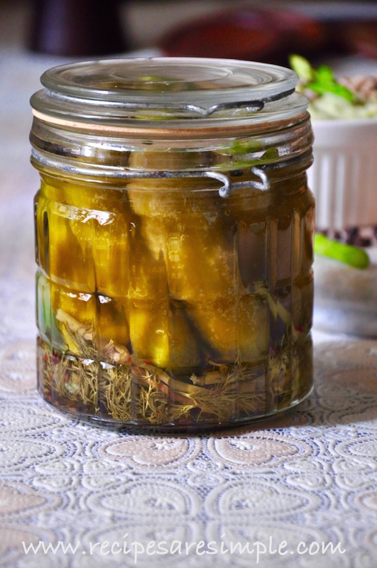 dill pickles quick refrigerator pickles