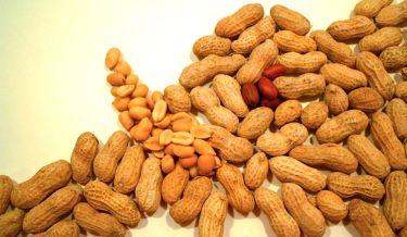 peanut health benefits,health,peanut,peanut benefits,health facts,groundnut