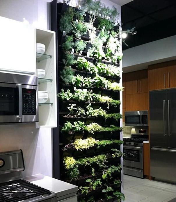 Jardin Vertical En La Cocina