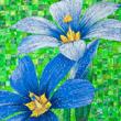 Blue-Eyed Grass Duet