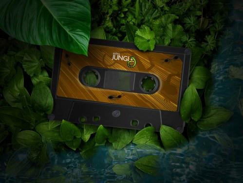 audiojungle11