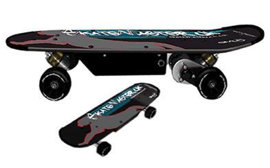 skatemaster Skatemaster   the lazy dudes sk8tr rig