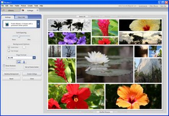 image 87 Picasa 3 beta   photo storage and organisation done simple.
