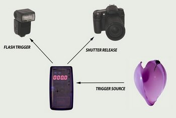 image 149 Universal Timer   high speed photography for the masses