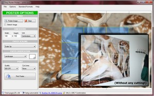 easayposterprinter small Easy Poster Printer   freeware lets you create large posters from your photos