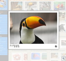 jquerylightbox2 thumb JQuery Lightbox   freeware creates cool online photo galleries