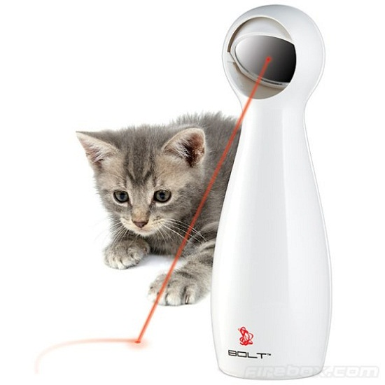 FroliCat BOLT entertains your cat so you don't have to