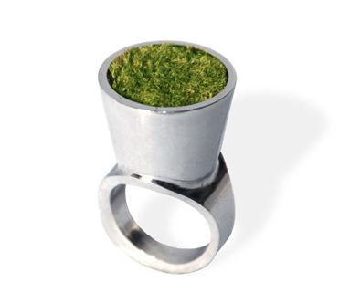 Growing Ring Growing Ring – tiny landscape for the concrete jungle