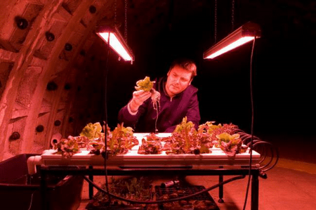 growingundergroundfarm 1 Londeners enjoy fresh produce grown underground