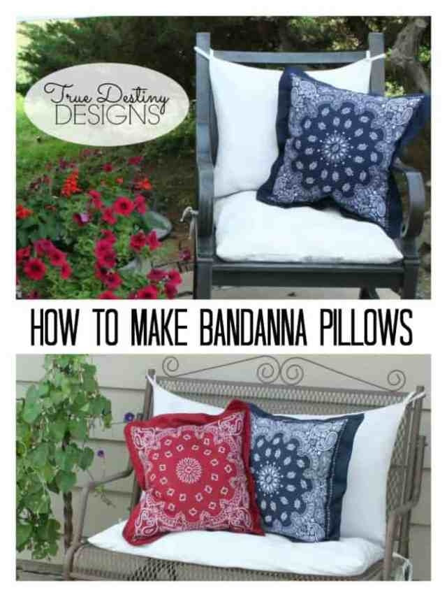 6_napkins.Bandanna-Pillows